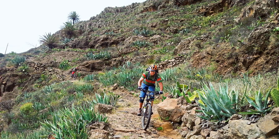 Mountain Bike y Ciclismo en La Gomera
